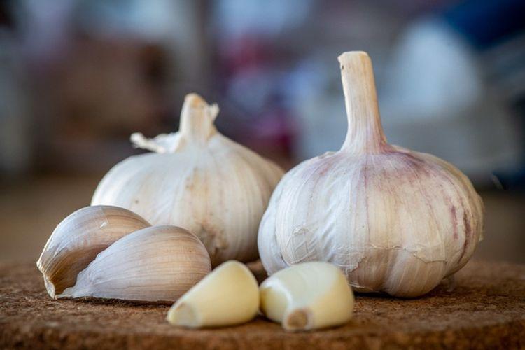 Tak Hanya Jadi Bumbu Pelengkap, Ternyata Bawang Putih Punya 7 Manfaat Ini untuk Kesehatan